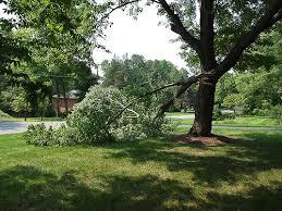 Hurricane Dorian Damage